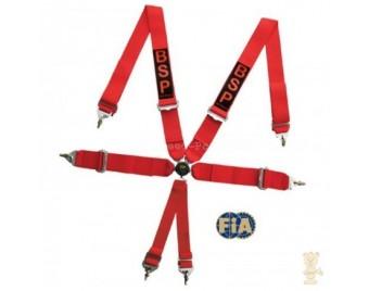 Sicherheitsgurt mit FIA